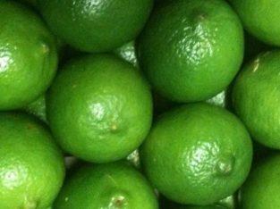 Saco de Limon
