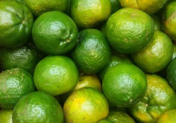 Mandarina oneco