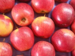 Manzana roja chilena