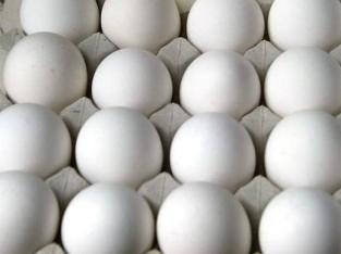 Vendemos huevos