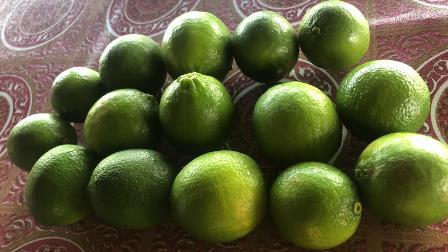Vendo limón orgánico