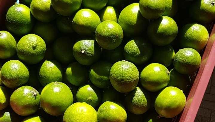 Tenemos limón disponible
