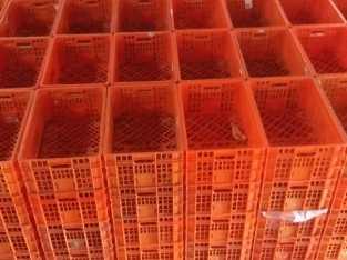 Vrnta de canastos usados