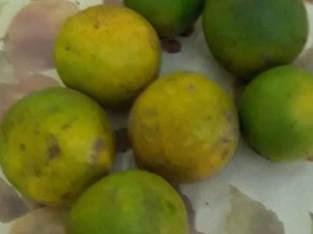 Naranjas para jugos