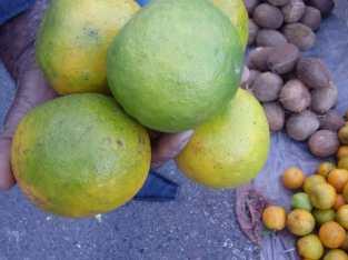 Tenemos naranjas dulces