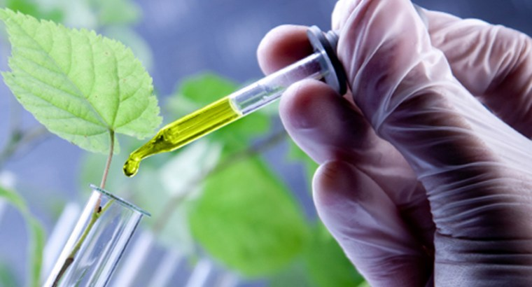 Biotecnología: el futuro es hoy