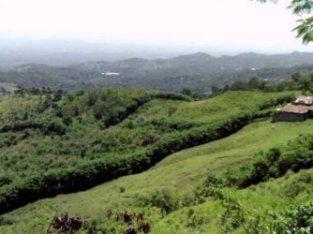 Finca agrícola o ecoturística