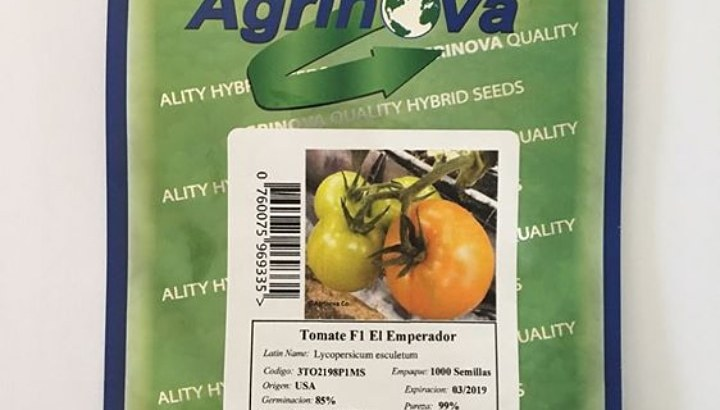Semillas de tomates f1