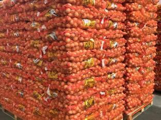 Oferta de cebollas