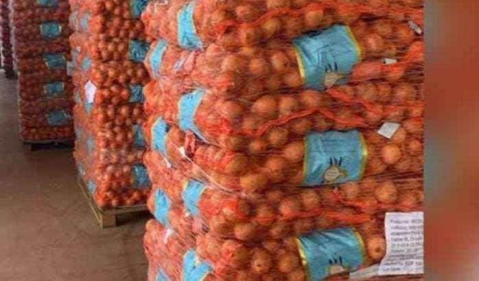 Cebollas importadas