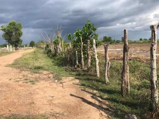 Finquita de 3o Tareas de oport. Aut. Santo Domingo-Samana..a solo 2 km.