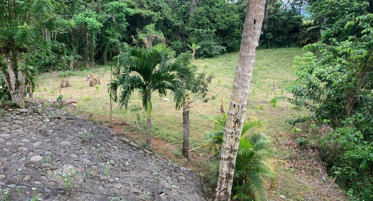 ( FINCA DE 10 TAREAS) Recreativa en Bonao