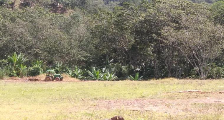 FINCA DE 7,800 TAREAS AGRÍCOLAS DE VENTA EN SAN JOSÉ DE OCOA