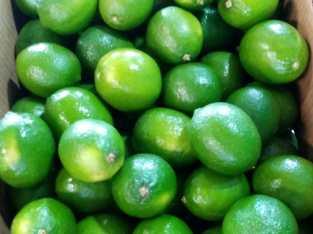 Limón importado