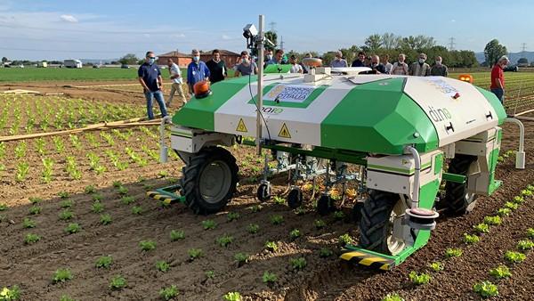 Científicos crean robot para deshierbar en los cultivos