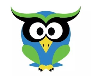 Owl Tech Logo Design