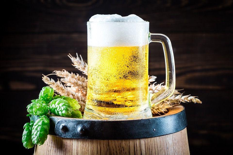 Cómo elaborar cerveza artesana en casa