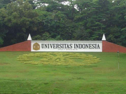 Universitas Indonesia, international Partnerships, Abdullah Gül University
