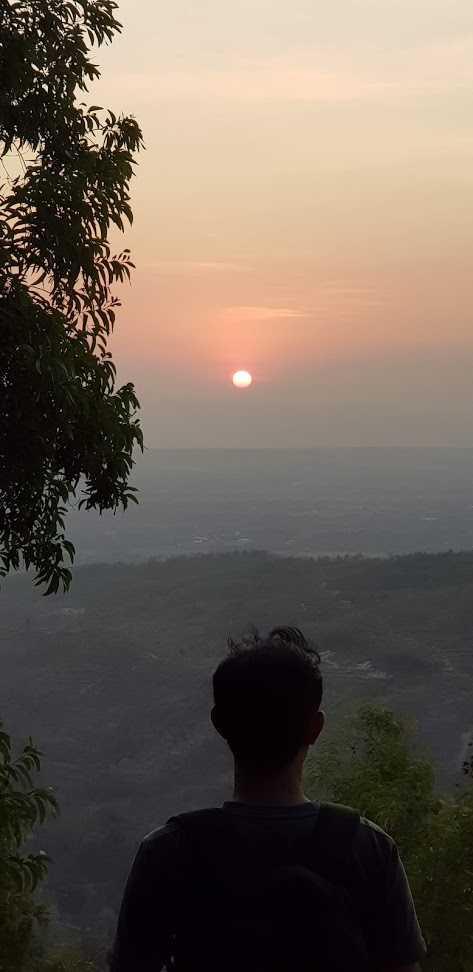 Sunset Hutan Pinus Pengger, Bantul, Yogyakarta