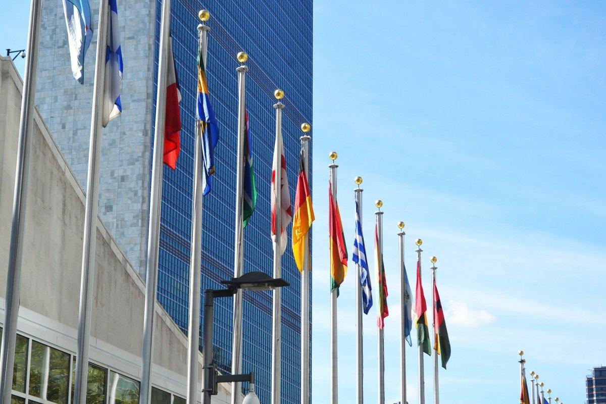 Pembebasan PPN Kepada Perwakilan Negara Asing dan Badan Internasional Serta Pejabatnya