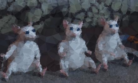Tres ciegos
