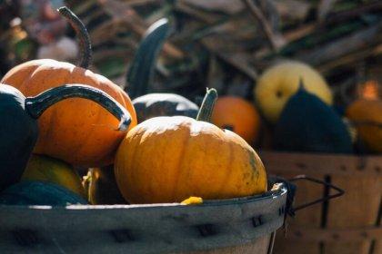 ideas para un domingo de octubre
