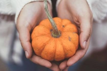 vivir el otoño