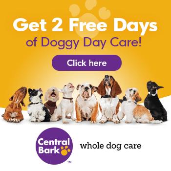visit central bark