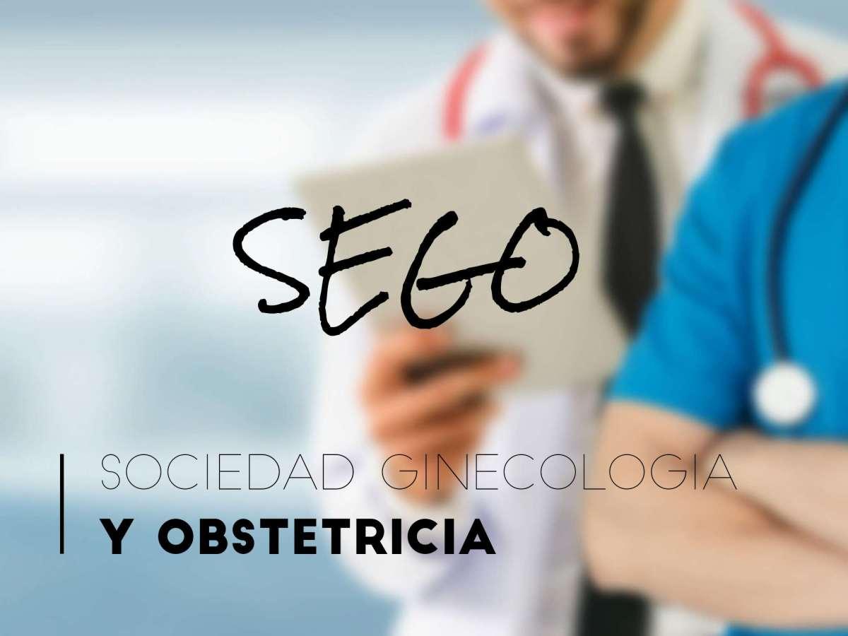 sego, sociedad española de ginecología y obstetricia, violencia obstétrica