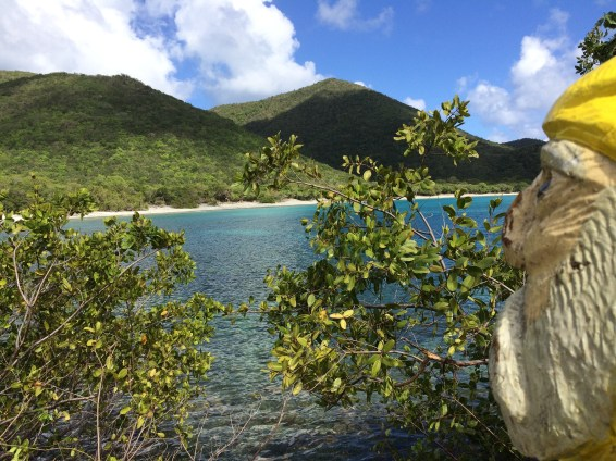 Captain Ahab of Ahab's Adventures visiting Greater Lameshur Bay on St. John U.S. Virgin Islands 2016