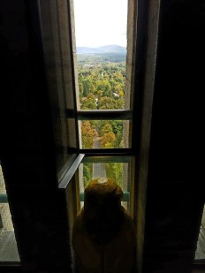 Captain Ahab of Ahab's Adventures enjoying the view at the Bennington Battle Monument Vermont 2016
