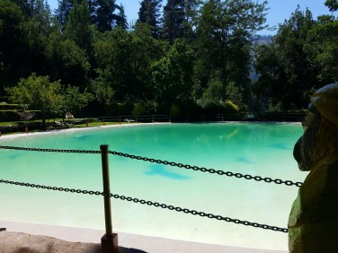 Captain Ahab of Ahab's Adventures relaxing at the piscina at Cascada de Las Animas campus in San Alfonso Chile 2017