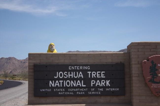 Captain Ahab of Ahab's Adventures at Joshua Tree National Park in California 2011