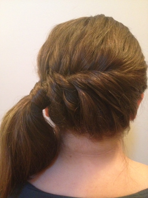 two stranded twist braids