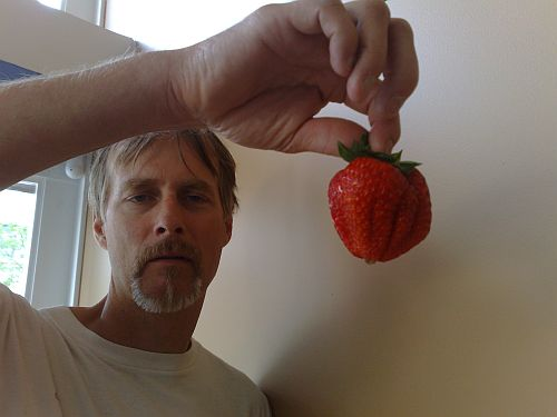 Big strawberry 1