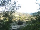 Riverbottom