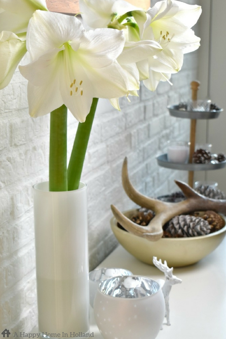 How to decorate with Amaryllis Flowers - simple home decor ideas using stunning big and bold blooms