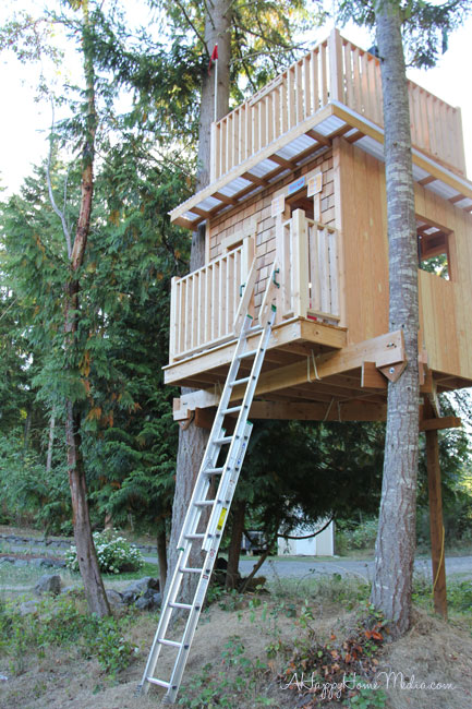 A Treehouse You Could Live In
