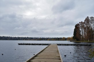 Green Lake Park supports both aquatic and land-based recreation.