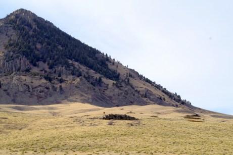 Range South of Helena, MT