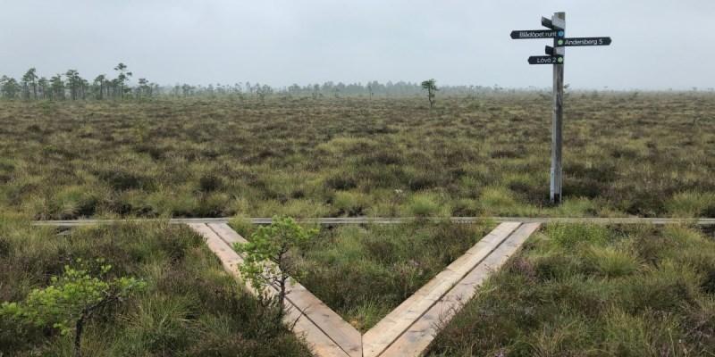 [瑞典第17座國家公園] Store Mosse National Park - 園區介紹
