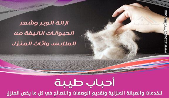 Photo of كيفية إزالة الوبر وشعر الحيوانات الأليفة من الملابس وأثاث المنزل