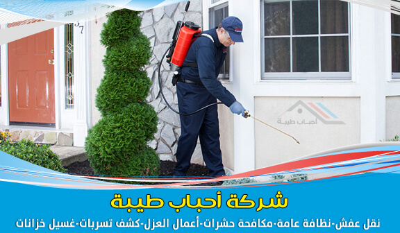 Photo of شركة رش حشرات بالدمام بسعر رخيص