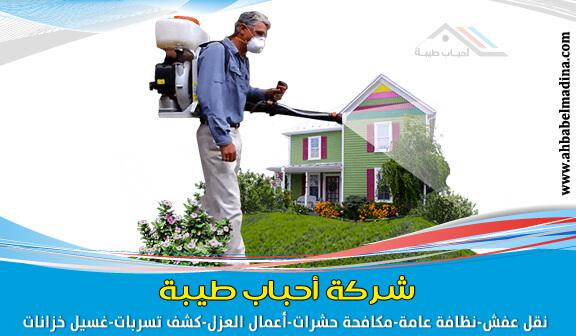 Photo of شركة رش حشرات بجدة