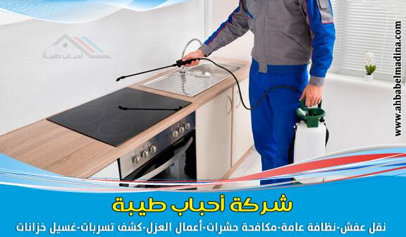 Photo of شركة مكافحة البق بالدمام بضمان وخصم 20%