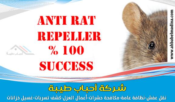 Photo of شركة مكافحة الفئران بالدمام والقضاء عليها في الحال