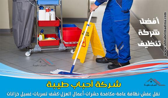 أفضل شركة تنظيف بابها *وتنظيف منازل وفلل وشقق وتنظيف بالبخار رقم (1)