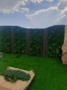 تنسيق- حدائق -بابها