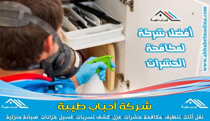 Photo of شركة مكافحة حشرات بالرس والتخلص من النمل الابيض