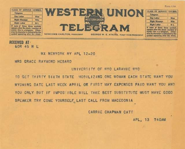 catt telegram